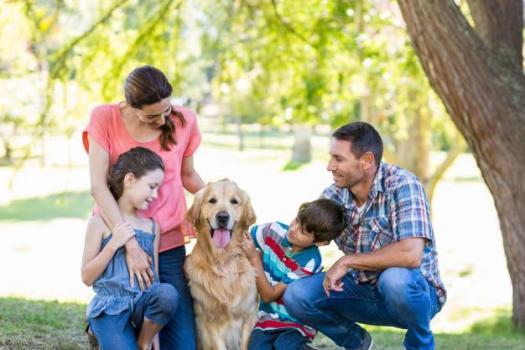 Famille heureuse leur chien dans parc 13339 259625