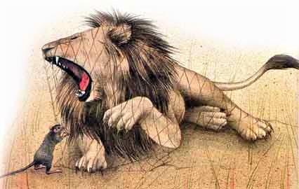 Le lion est capturé