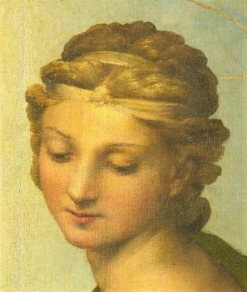 Particolare volto santa barbara madonna sistina raffaello sanzio